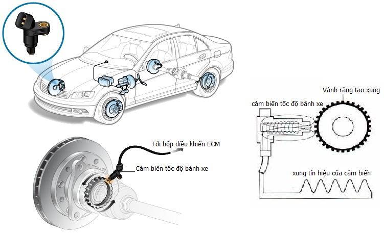 Hiểu đúng về hệ thống chống bó phanh ABS trên ô tô Hyundai